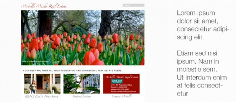 Michelle Maida Real Estate WP website by Gray Sky Studio